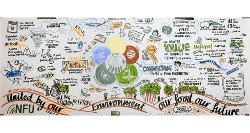 NFU Environment Conference Dec 2018 illustration summary of event_59364