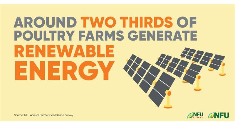 NFU Twitter infographic poultry renewable energy