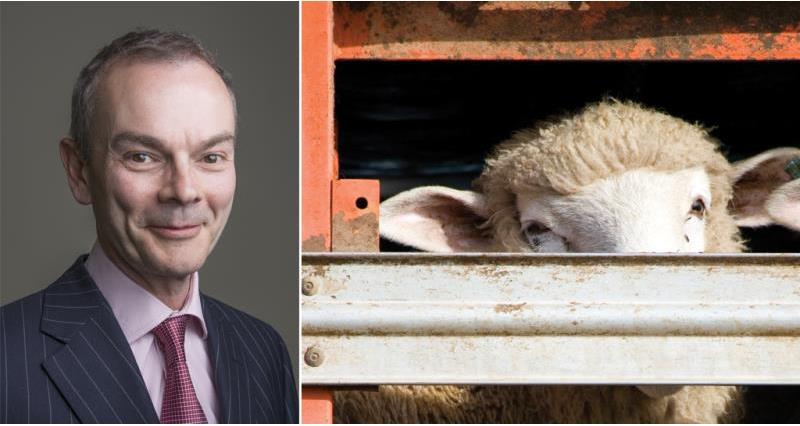 Tom Price animal transport blog_43786