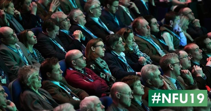#nfu19 hall1 audience web crop_61120