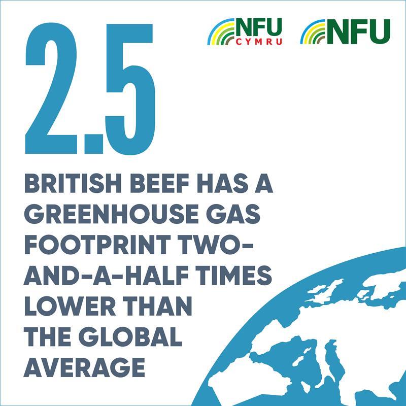 Instagram British beef greenhouse gas carbon footprint infographic_70702