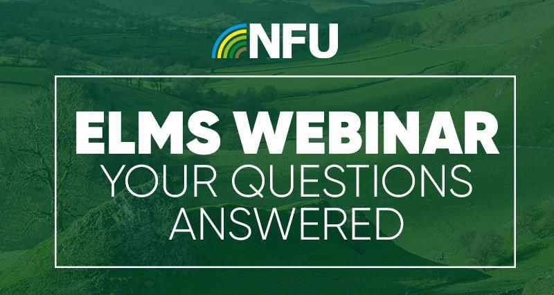 ELMs webinar: Your questions answered