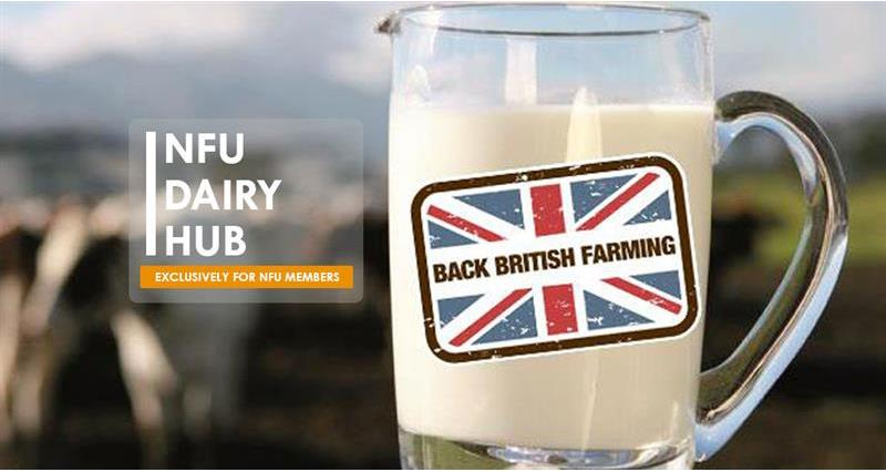 Setting the record straight: Our dairy hub