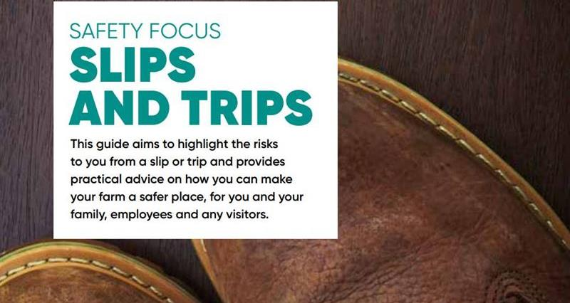 slips and trips health and safety leaflet web crop_72709