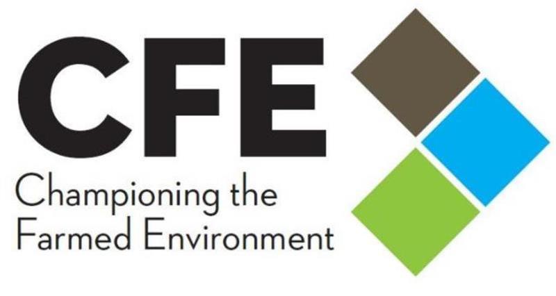 CFE 2019 logo _60379