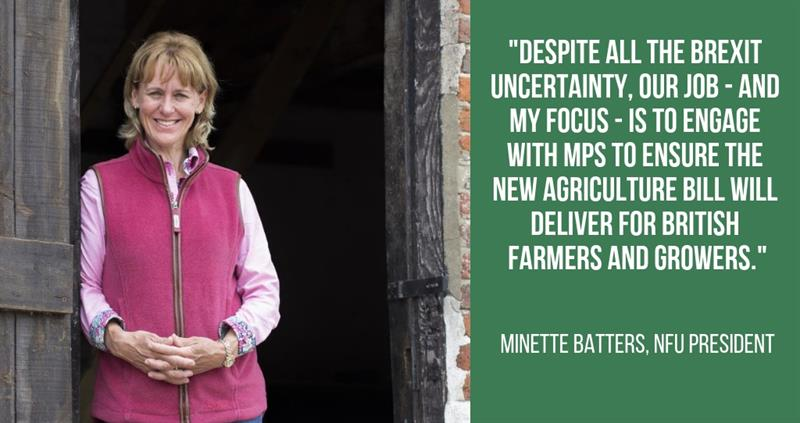 minette batters new year message 2019_59509