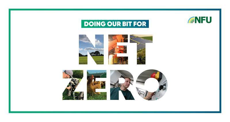 doing our bit for net zero official web crop_74415