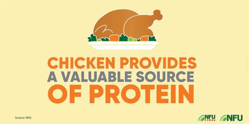 Chicken valuable source of protein_72227