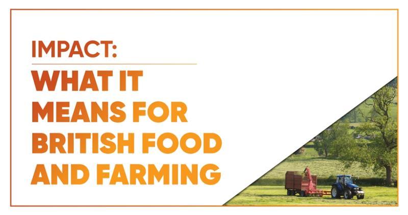 Future of Food 2040 - Impact_61062