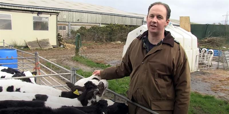 mark tb free england case study calves_74231