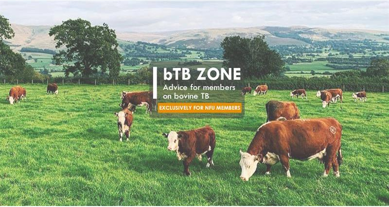 NFU bTB Zone: Advice for members on bovine TB