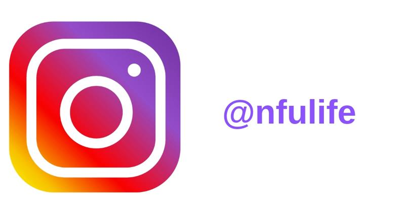 nfulife instagram logo social media icon_60176
