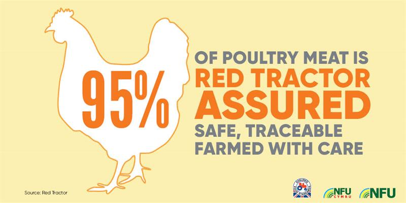 Poultry infographic Red Tractor_72226