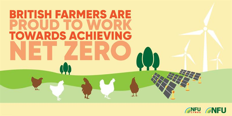 British farmers working towards net zero poultry infographic_72559