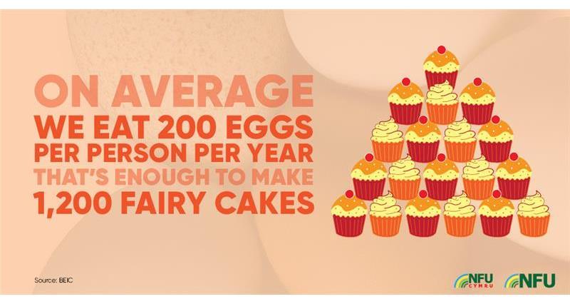 200 eggs, 1,200 fairy cakes infographic_72221