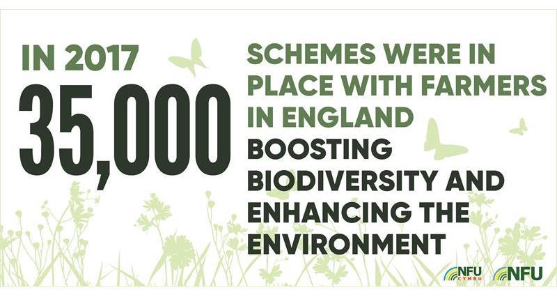 35,000 biodiversity schemes infographic_70611