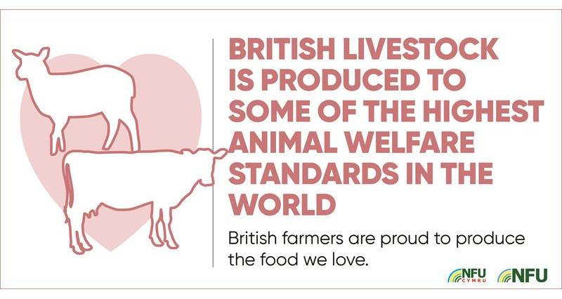 British livestock produced to highest welfare standards_70607