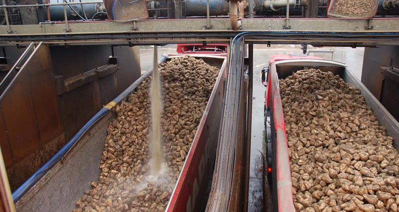 NFU Sugar and British Sugar joint statement: end of Campaign beet deliveries