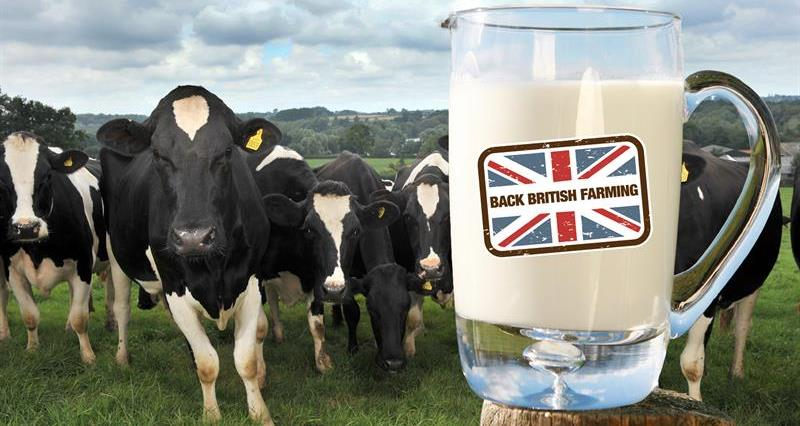 Dairy contracts consultation: All you need to know