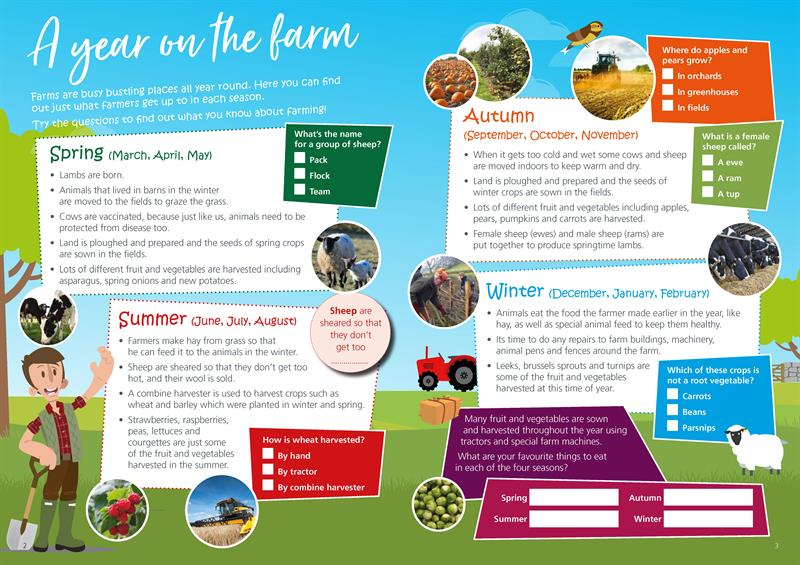 Fun and activity booklet activities_72851