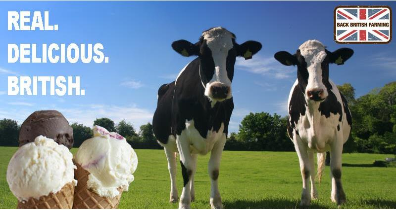 Choosing British Dairy Ice Cream page header_44883