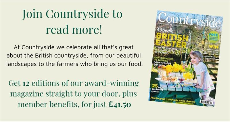 Countryside magazine advert_62203