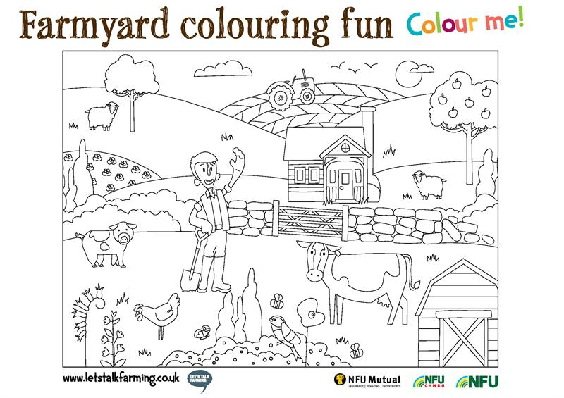 Fun and activity booklet activities_72852