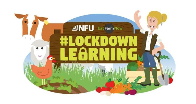 Lockdown Learning, #LockdownLearning_72946