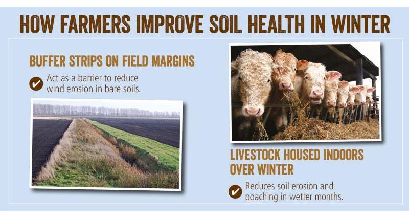 soil health winter_52074