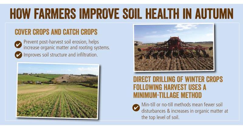 soil health autumn_52066