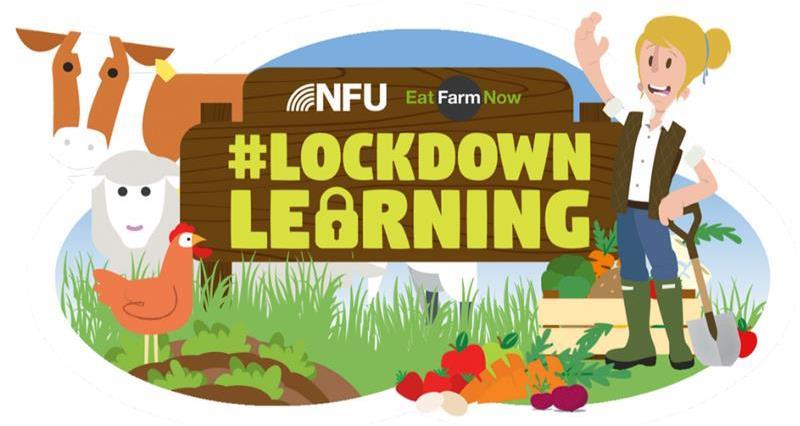 Lockdown Learning logo_72947