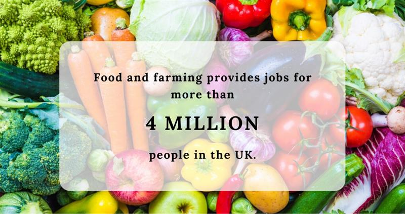 farming and employment canva_60631