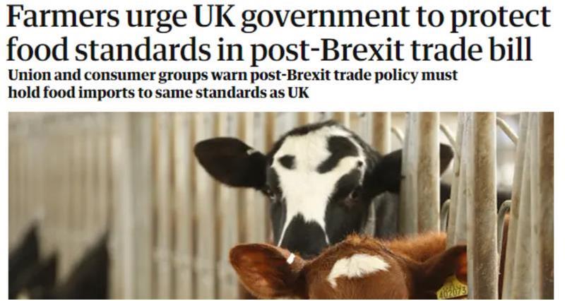 The Guardian headline food standards_73620