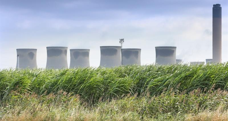 Drax and NFU team up to boost UK energy crop market