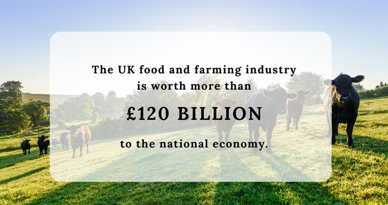farming and economy canva_60628
