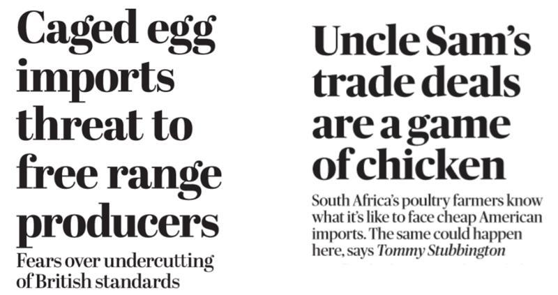 Newspaper headlines_62869