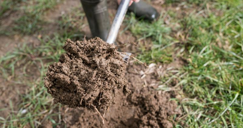 Enhance your productivity and protect the environment by taking care of your soils