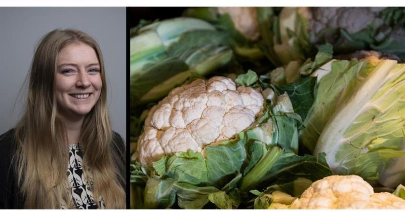 Brassica Shortages_67899