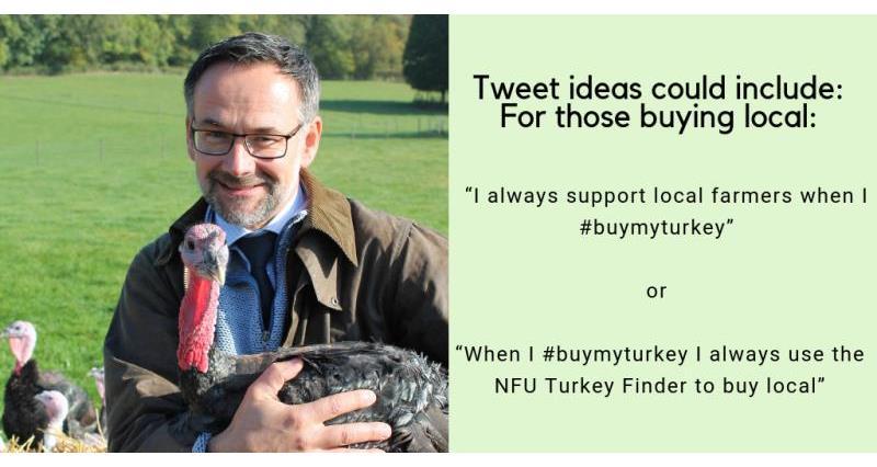 #BuyMyTurkey Back British Farming social media ideas William White_58688