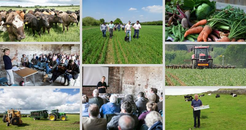 organic forum on farm visits_61612
