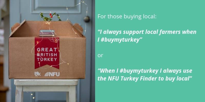 #BuyMyTurkey Turkey Finder social media ideas_58685
