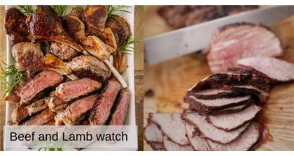 AHDB Beef and Lamb Watch June 2019