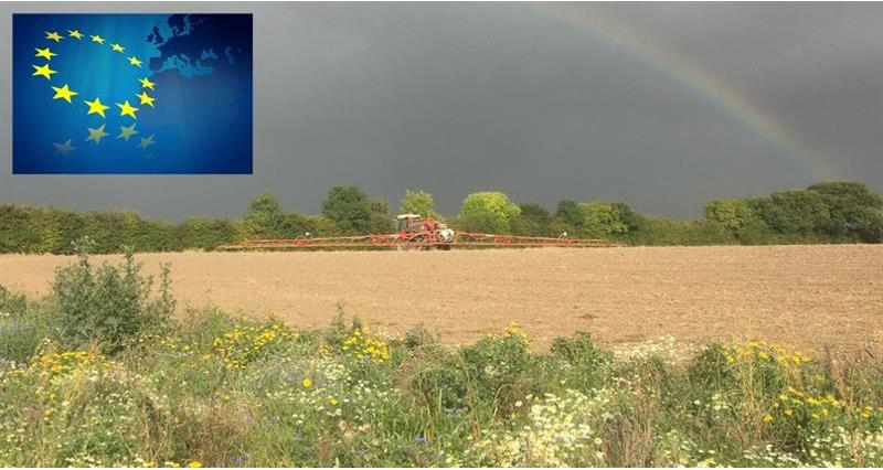 Decisions taken on key pesticide authorisations