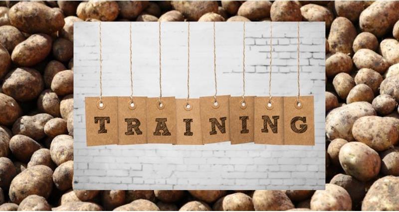NSP training_64036