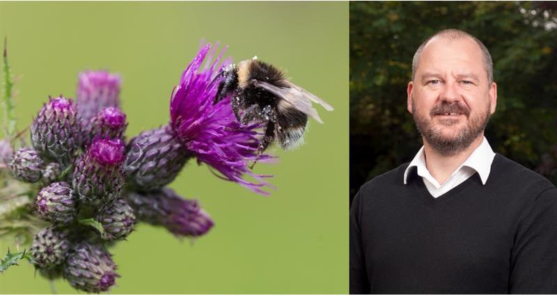 NFU expert insight: insect apocalypse or reduced resilience?
