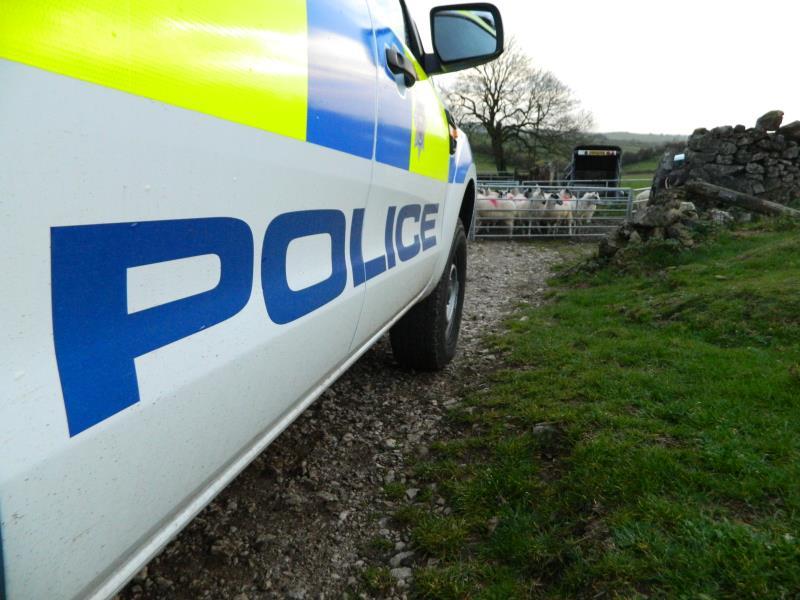 Generic police on farm 2_58363