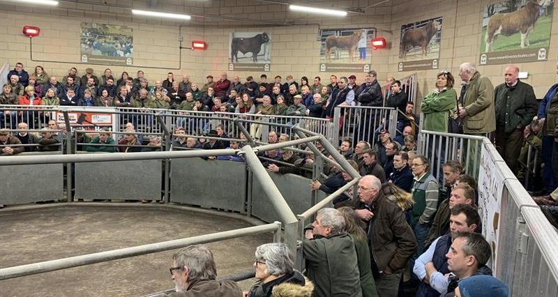 Newark Livestock Market_72038