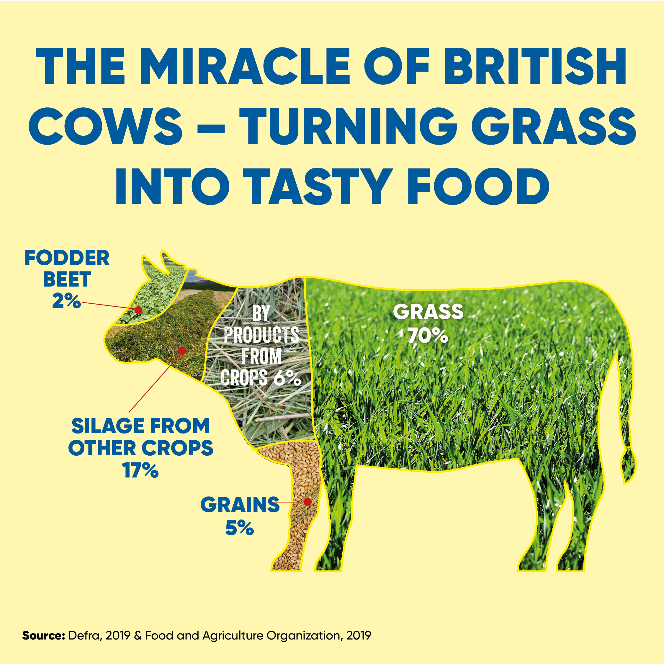 NFU Instagram infographic cattle feed