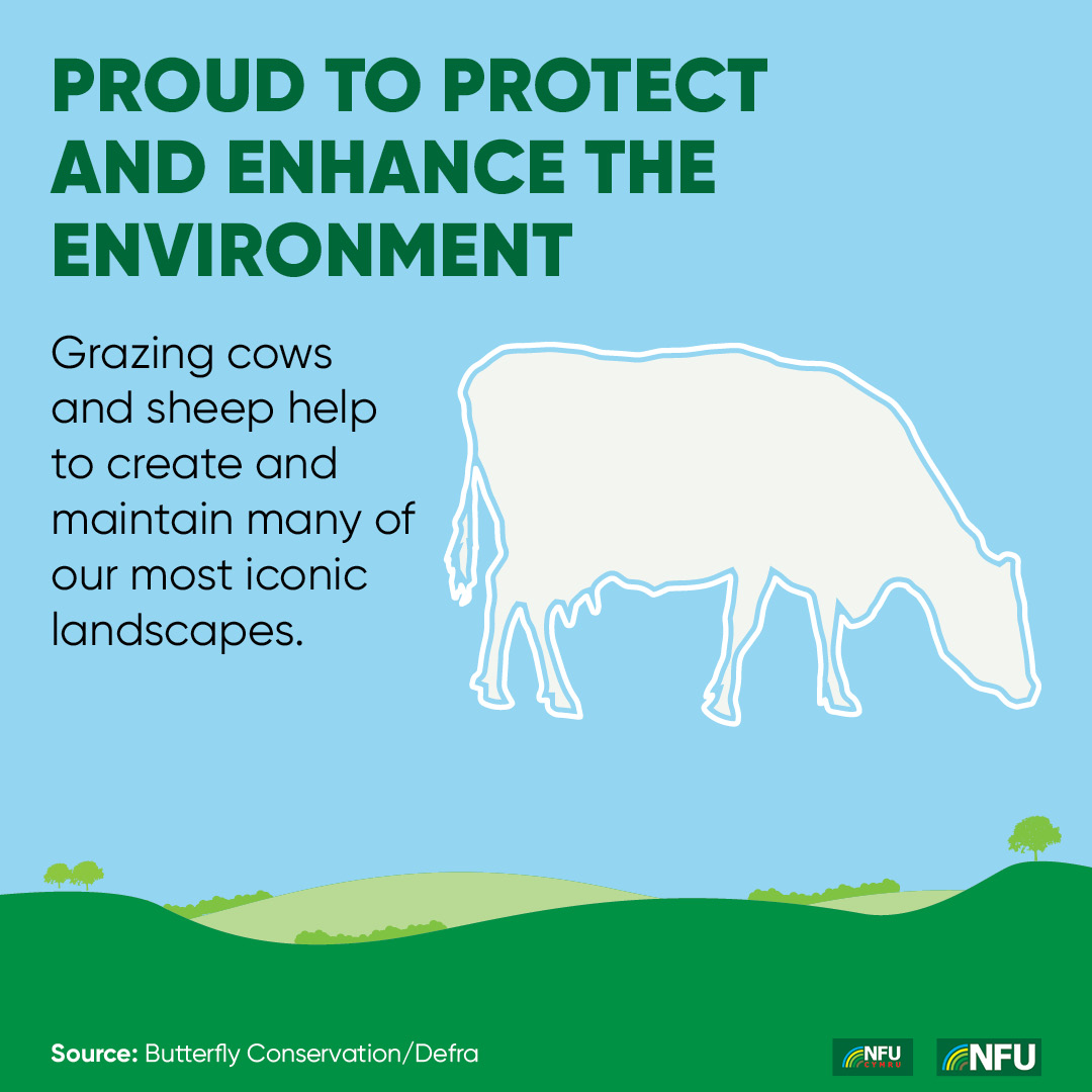 NFU Instagram infographic enhance the environment