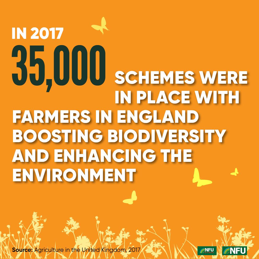 NFU Instagram infographic biodiversity schemes